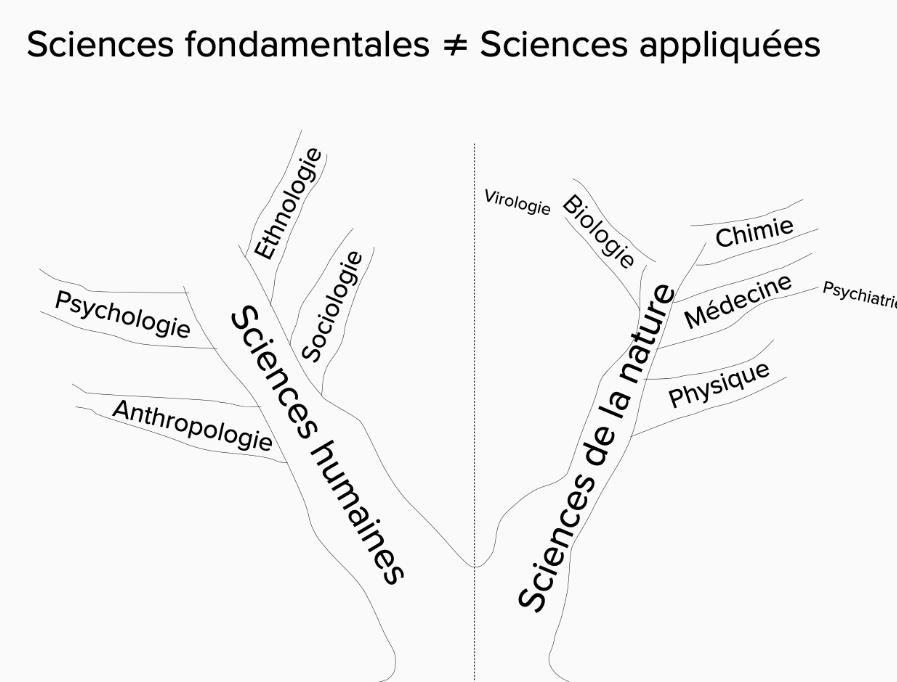 Arbre des sciences dessiné ensemble avec Clémence et Lauriane le 26/10/20